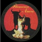 Flamenco Nuevo CD